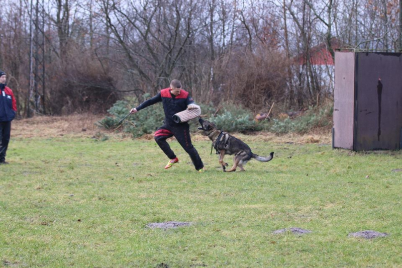 C-træning med Frederik Bekkelund
