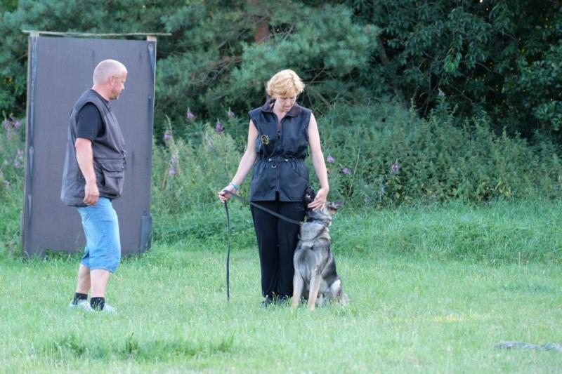 Kursus med Joyce & Raymond van Eck - juli 2014