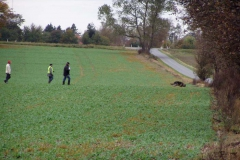 SPH DM 2007