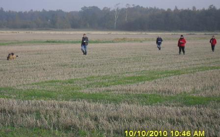 Prøve 10/10 2010